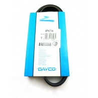 Pasek wieloklinowy Mondeo Mk3 / Transit 2.0/2.2 TDCi/TDDi  Dayco 4PK736